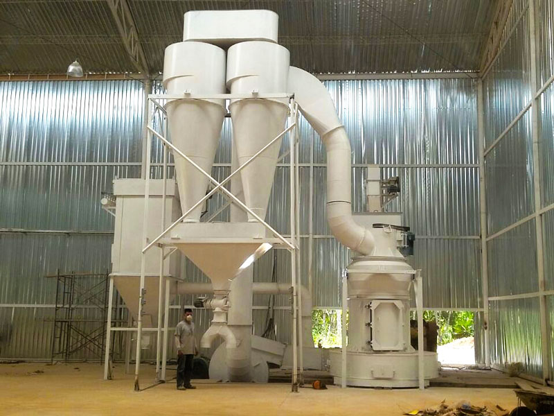 daswell raymond roller mill in working site