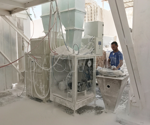 the daswell calcium carbonate packing machine