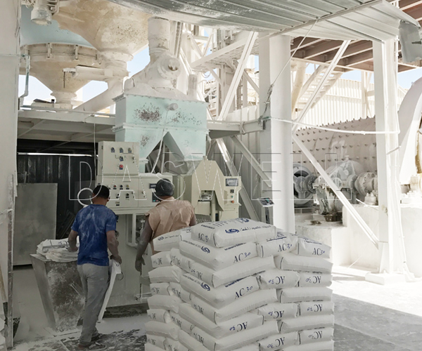 the daswell mineral packing machine
